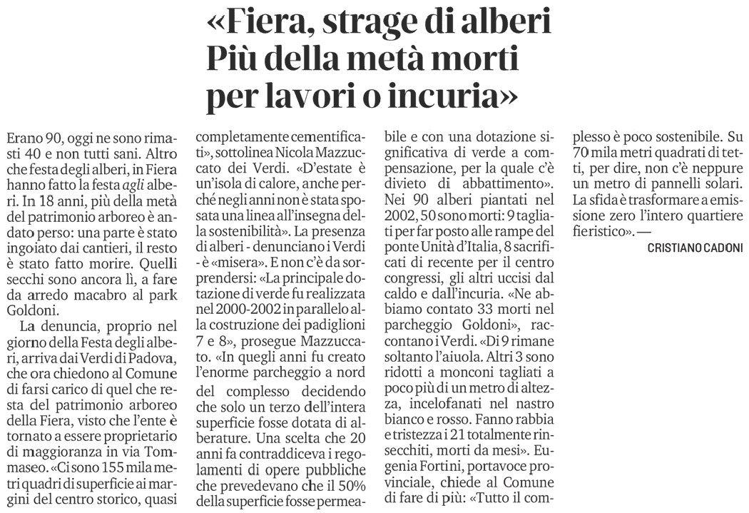 Fiera-di-Padova-strage-di-alberi-articolo-Il-Mattino-di-Padova-22-novembre-2020